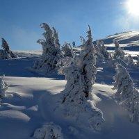 Снег :: Владимир Клюев