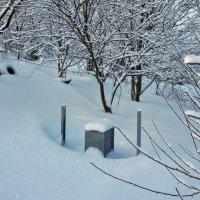 Экскурсия в Гадюкино зимой (19) :: Александр Резуненко