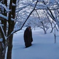 Экскурсия в Гадюкино зимой (21) :: Александр Резуненко