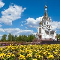 Храм Святой Великомученицы Татьяны :: Николай Хондогий