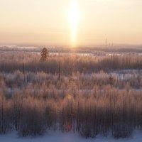 Зима :: Анна Дорофеева