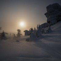 Лунная ночь :: Виталий Истомин