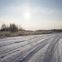 Зимняя дорога :: Олег Пученков