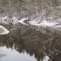 Река Сестра. Февраль. :: Маера Урусова