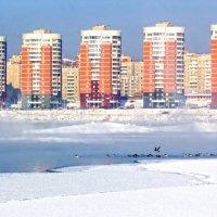 Город, река, птицы :: Анатолий Иргл