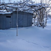 Экскурсия в Гадюкино зимой (22) :: Александр Резуненко
