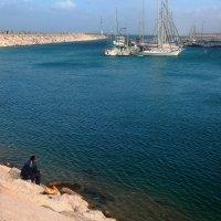ловись рыбка... :: ALEX KHAZAN