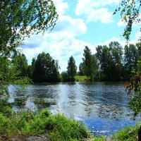 Деревенское озеро :: Владимир Андреевич Ульянов