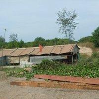 Вьетнамские жилища (картон, фанера и т.д.), зато с национальным флагом! :: Людмила Огнева