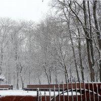Февраль,утро в городе... :: Тамара (st.tamara)