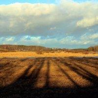 длинные тени декабря :: Нина