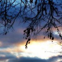 вечернее небо :: Александр Прокудин