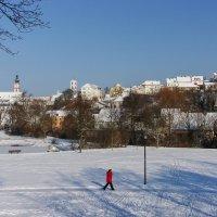 Зима в городе :: Waldemar .