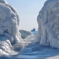 наша Арктика) :: Ingwar