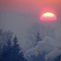 Утонуло солнышко в тумане. :: nadyasilyuk Вознюк
