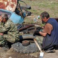Сельская жизнь -это головная боль :: Николай Сапегин