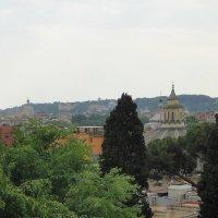 Вид с холма Пинчо :: Елена Смолова