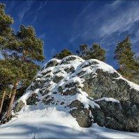 Сосны, снег и скалы :: Николай