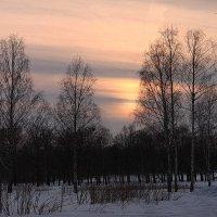 Классика заката... :: Tatiana Markova