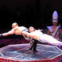 Гимнасты :: максим лыков
