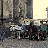 на улицах Дрездена :: Ольга