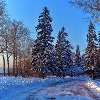 Зима :: Анатолий Иргл