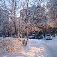 Сияние зимы :: Елена Семигина