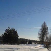 Зима :: Мила
