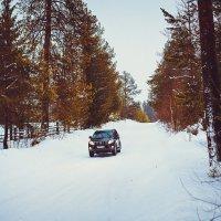 Зимняя дорога :: Сергей Смирнов