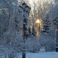 Зимний этюд 14 :: Константин Жирнов