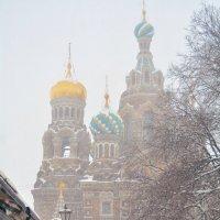 Снегопад :: Анастасия Чистякова