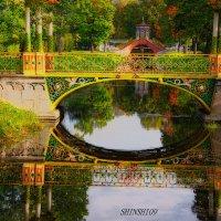 Александровский парк в Пушкине :: Тамара Рубанова