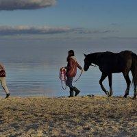 на пляже :: Андрей Р.