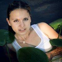 . :: Анастасия Чистякова