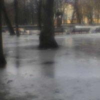 В ожидании весны :: galina bronnikova