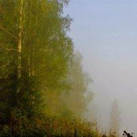 Туман уходит в распадок :: Сергей Чиняев