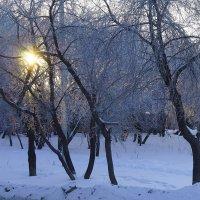 Зима :: A. SMIRNOV