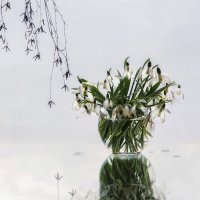 Весна идет... :: Ирина Приходько