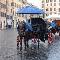 В Риме дождь. :: vadimka