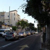 Израиль одна из улиц  города Хайфы. :: Надежда