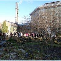Очередь в ботанический сад :: Вера