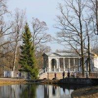 Пробуждение старинного парка.... :: Tatiana Markova
