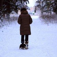 прогулка в лесу :: Alena Karpova