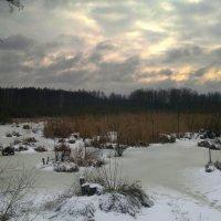 февральское болото :: Александр Прокудин