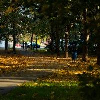 Осень 2015 :: Юлия Кузнецова