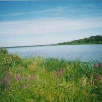 Озеро Белое :: Виктор Мухин