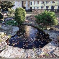 Ботанический сад :: Вера