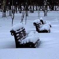 В зимнем парке :: Галина Чепиль
