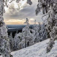 winter window :: Dmitry Ozersky