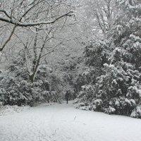 А снег идёт :: Alexander